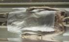 mummia-xin-zhui1